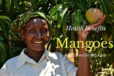 Health benefit of mangoes includes good for heart, premature aging, and fight against cancer; improve memory, well for eyes and aid digestion ...