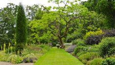 Anglický park v Anglii :-) ...respektive lesní zahrada v zámeckém parku královského paláce Windsor...