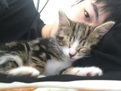 two sleepy kittens uwu Korean Boys Ulzzang, Cute Korean Boys, Asian Boys, Cute Boys, Ullzang Boys, Men With Cats, V Bts Cute, Boy Cat, Aesthetic Boy