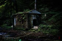Ruin in the woods by jcone. Please Like http://fb.me/go4photos and Follow @go4fotos Thank You. :-)