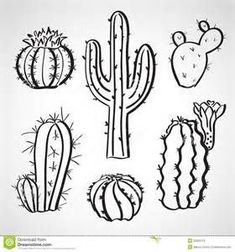Image result for how to draw a cactus