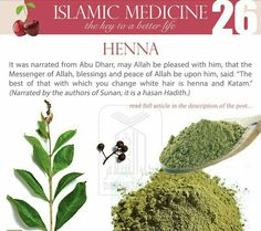 What orders to delegation did the prophet give? Islam Beliefs, Islamic Teachings, Islam Religion, Islamic Quotes, Islam Quran, Islamic Messages, Hindi Quotes, Natural Medicine, Herbal Medicine