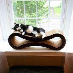 PetFusion Cat Scratcher Lounge craigny