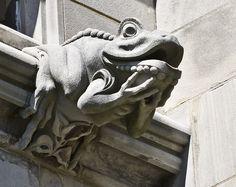 Gargoyle - Frog, via Flickr. Washington Cathedral