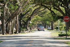 Coral Gables...old neighborhood <3