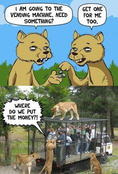 Funny Pic Dump (5 pics)