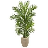 Shop Golden Cane Palm Artificial Tree in Oval Planter - Overstock - 19532788 Robellini Palm, Palm Trees, Artificial Cactus, Tree Base, Silk Plants, Types Of Plants, Decorative Accessories, Planters, Home And Garden