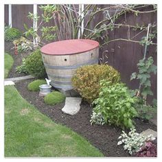 Worm farm in a Wine Barrel. An attractive functional feature for your Garden.