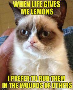Grumpy Cat meme Life gives you lemons by Raydog