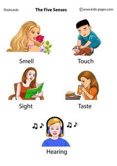 Английские слова в картинках – 105 photos | VK