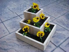 "Wood planter, garden flower pot, tabletop size, for indoor or outdoor flowers and plants:  ""Jewel"". $65.00, via Etsy."