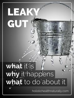 Leaky Gut: What It Is, Why It Happens, What To Do About It | holistichealthnaturally.com