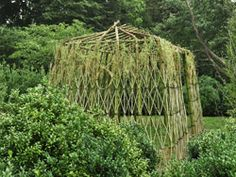 ANOTHER LIVING WILLOW CREATION FOR YOUR GARDEN
