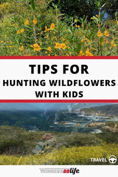 Looking for things to do with kids while living the RV lifestyle? Here are tips for a great day of wildflower hunting for the whole family. Whether you are full-time rv'ers or weekend warriors we know you are always looking for ways to keep the kids entertained so add this activity to the list. You can use an app to find the best locations, then make it a scavenger hunt, or use as a homeschooling lesson. Use these ideas to create the perfect family outing! #WinnebagoLife #WildflowerHunting