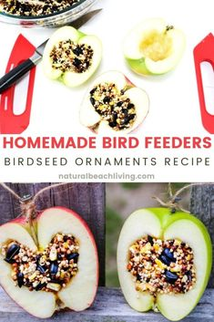 How to Make Apple Birdseed Homemade Bird Feeders Everyone Loves - Natural Beach Living Preschool Apple Activities, Preschool Apple Theme, Thanksgiving Activities, Wild Bird Feeders, Diy Bird Feeder, Fall Crafts For Kids, Craft Projects For Kids, Bird Seed Ornaments, Bird Feeding Station
