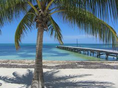 I want to #travel to #Belize!!