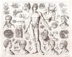Surgical Operations Medical Illustration 1850 by TimesLegacy