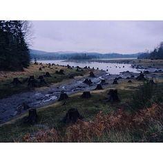 Alder Lake, Washington, USA.