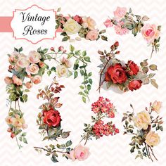 Vintage Roses Digital Clipart and Photoshop by TanglesTreasures, $4.50