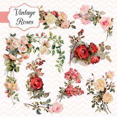 Vintage Roses Digital Clipart Set by TanglesTreasures on Etsy
