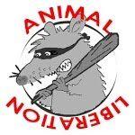 Per gli INFAMI che abbandonano gli animali - YouTube