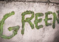 How to Make Moss Graffiti -- via wikiHow.com