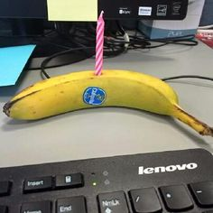 My wife's stepsister is a vegan, this is what her co workers gave her to celebrate her birthday.