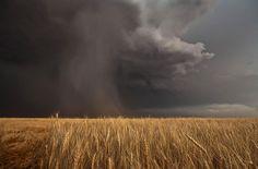 stunning ... Lovely Sky Monsters - In Focus - The Atlantic