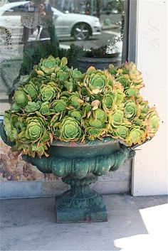 Urn o' succulents - I think you'd need to mound the dirt - shape chicken wire over the top and then plant the succulents.