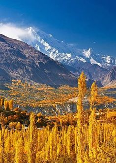 Hunza, Pakistan. To book go to www.notjusttravel.com/anglia