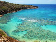 Hanauma bay Oahu Hawaii, via Flickr.