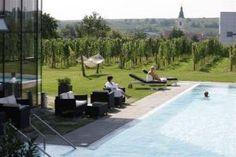 Het Loisium Wine & Spa Resort ligt te midden van de wijngaarden van Langenlois, dichtbij de door Unesco beschermde streek Wachau.  Wijn speelt een belangrijke rol in dit hotel, zowel in de gastronomische gerechten als bij de spabehandelingen.   Wijn speelt een belangrijke rol in dit hotel, zowel in de gastronomische gerechten als bij de spabehandelingen.  Langenois is de grootste wijnstad van Oostenrijk en op 7 kilometer van het hotel kan je golfen tussen de wijngaarden.