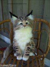 NEEDLE FELTED LARGE WEIGHTED LIFE SIZE MAINE COON KITTEN CAT~ OOAK BY ARTIST