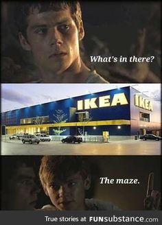 The Maze Runner Więzień Labiryntu Thomas Newt Newt Maze Runner, Maze Runner Funny, Maze Runner Quotes, Maze Runner Thomas, Maze Runner Trilogy, Maze Runner Series, Hunger Games, Fandoms, Funny Memes