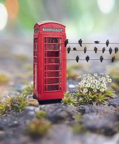 Miniature Photography, Cute Photography, Creative Photography, Mini Things, Cute Little Things, Cute Photos, Beautiful Pictures, Vsco, Honfleur