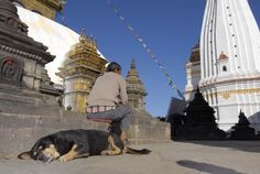 Nepal has some of our favourite temples. Culture Travel, Temples, Nepal, Opera House, Documentaries, Travel Photography, Cultural Trips, Opera, Travel Photos