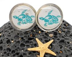 Knobs Glass Knobs Cabinet Knobs Clear Glass by KnuckleheadKnobs Turtle Images, Bubble Wrap Bags, Star Of Bethlehem, Glass Knobs, Recycled Furniture, Teal Colors, Cabinet Knobs, Clear Glass, Kids Room