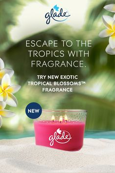 Enjoy a round trip to paradise with notes of monoi blossoms and coconut milk. Let your senses take a vacation with our candle that fills the room with fragrance quicker. Diy Beauty Hacks, Free Stuff By Mail, Fitness Tracker, 3 Wick Candles, Scented Oils, Round Trip, Coconut Milk, Health And Beauty, Wicked
