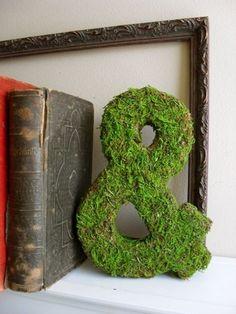 So pretty on a bookshelf