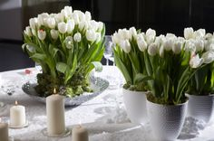 St. Patty's Day centerpieces