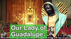 Basilica de Guadalupe Mexico Df