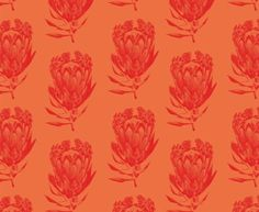 See our Protea Bright Magenta on Orange fabric available from Design Team. Magenta, Aqua, Orange Fabric, Lime, Bright, Prints, Design, Decor, Water