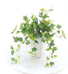 光触媒人工観葉植物 8317「ミニイングリッシュアイビー 28cm(白陶器)」造花ドットコム zouka.com