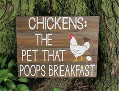 If someone would like to raise chickens, it's smart to make sure that they set up a chicken coop that meets their own requirements. Make sure you locate the best designs for you to construct your own. Chicken Coop Signs, Chicken Humor, Building A Chicken Coop, Chicken Coops, Funny Chicken, Chicken Houses, Chicken Race, Diy Signs, Funny Signs