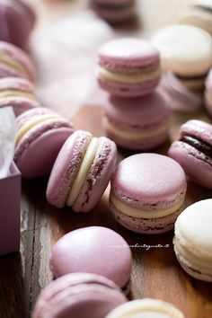 Macarons - Step by step recipe for perfect Macarons Macarons, Macaron Cake, Cupcakes, Chocolate Hazelnut Cake, Rhubarb Cake, Macaroon Recipes, Rhubarb Recipes, Perfect Cookie, Cannoli