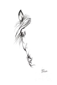 Drawing Of A Horse 2017 02 09 Drawing by Angel Tarantella - Pferde - Piercing Cute Tattoos, Body Art Tattoos, Small Tattoos, Tattoos Skull, Tatoos, Horse Tattoo Design, Tattoo Designs, Horse Tattoos, Small Horse Tattoo
