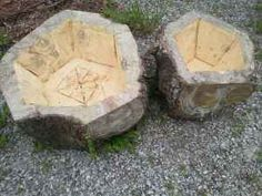 flower pots made from tree stumps