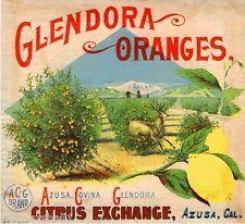 Glendora Evolution Orange Citrus Fruit Crate Label Art Print