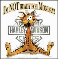 I'm NOT Ready for Monday!