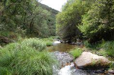 Río Neila.